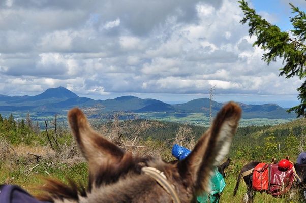 3 days with a donkey in Auvergne - 2 hotel nights