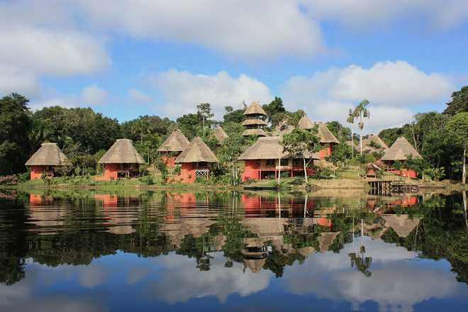 Journey in the Amazonian part of Ecuador with Aluna voyages