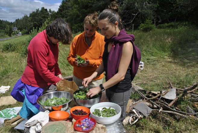 picking and wild cooking with Aluna Voyages