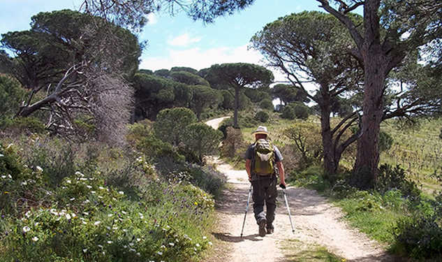 hiking in Provence Aluna voyages