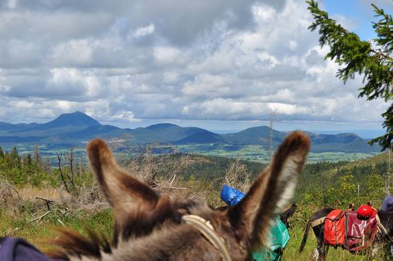 hiking with a donkey in Auvergne with Aluna voyages
